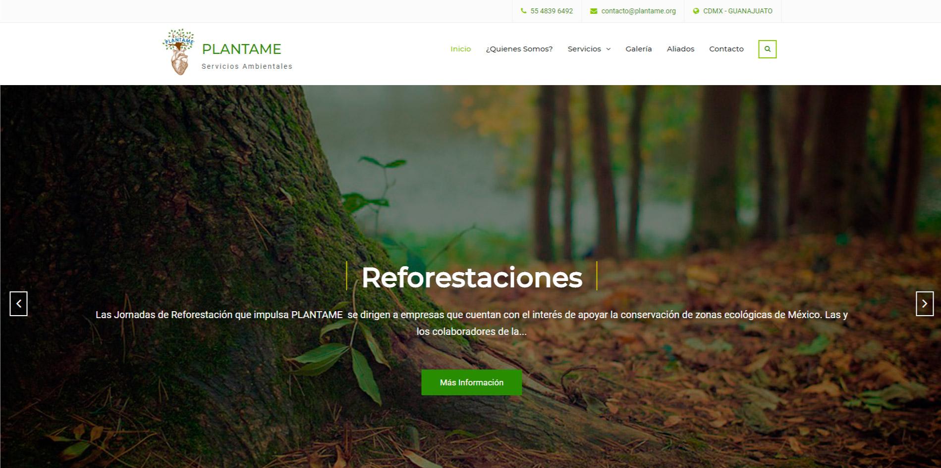 Páginas web en Guanajuato | Editando Tu Negocio