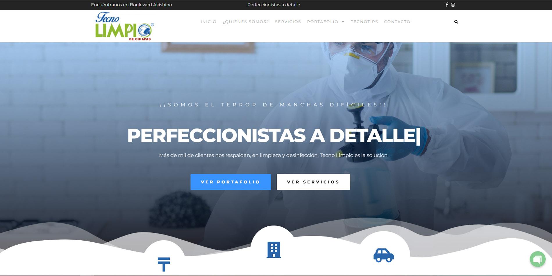 Páginas web en TAPACHULA, CHIAPAS | EDITANDO TU NEGOCIO 2018